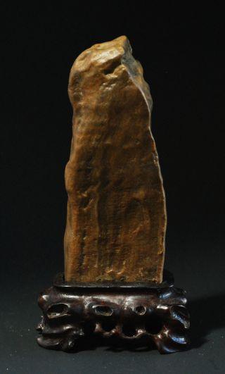 A Miniature Petrified Wood Scholar Stone With Stand. photo