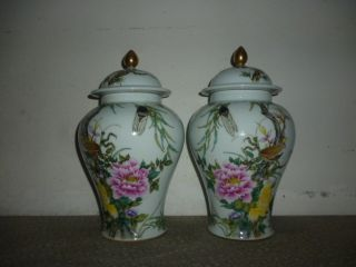 Fine A Pair Chinese Famille Rose Porcelain Flowers & Birds Vases photo