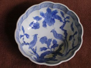 C.  1890 Chinese Blue & White Porcelain - Pottery Bowl/long Tailed Bird Of Paradise photo