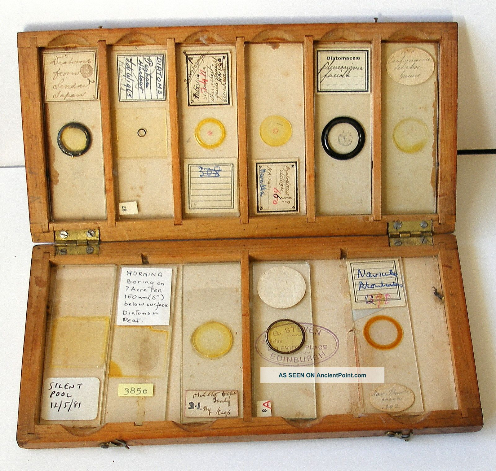 Boxed Collection (11) Early Diatom Microscope Slides Other photo
