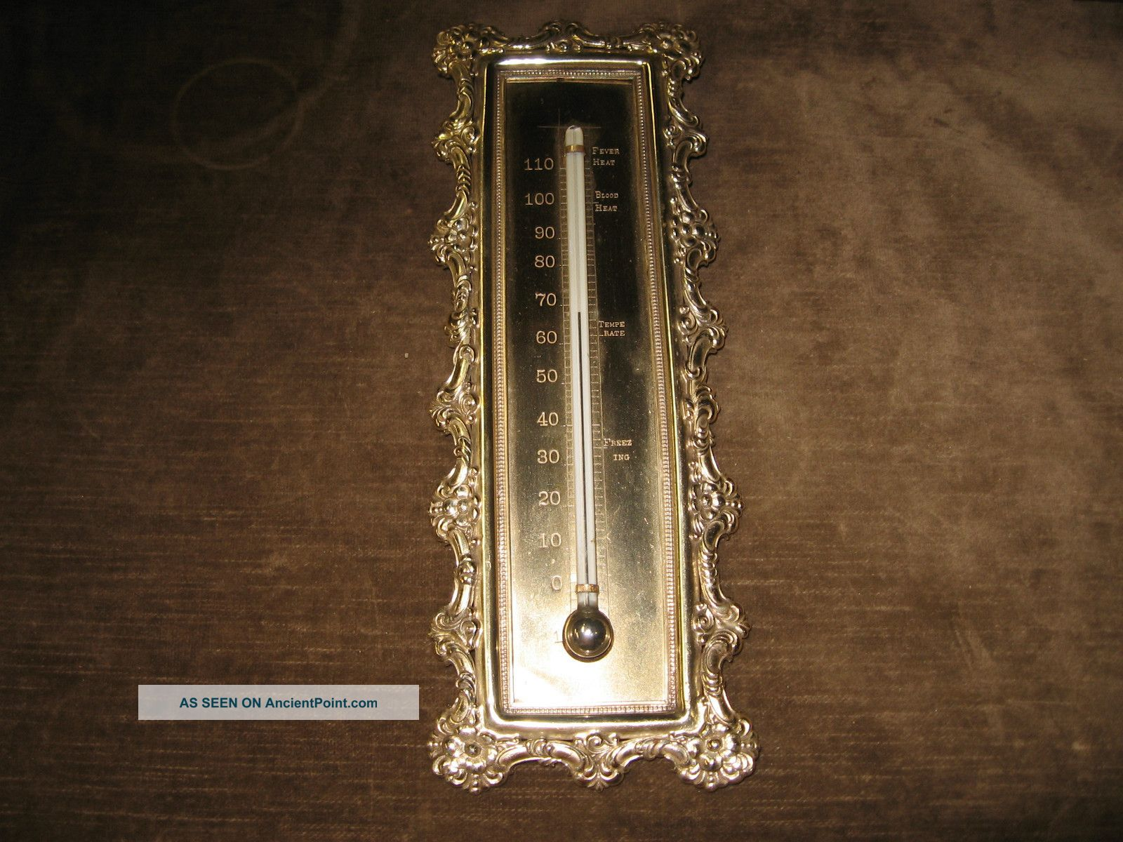 Antique 1800s Ornate Scientific Brass Thermometer Blood Fever Heat Instrument Other photo