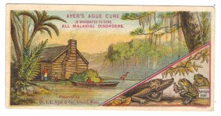 Antique Ayer ' S Ague Malaria Cure Quack Medicine Trade Card Swamp Theme photo
