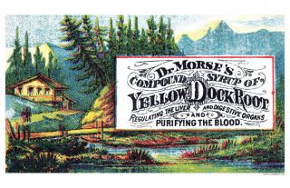 Dr Morse ' S Yellow Dock Root Blood Purifier Syrup Poster photo