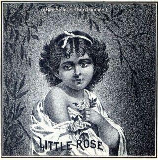 Antique ~little Rose~ Girl Vintage Cigar Box Labels photo