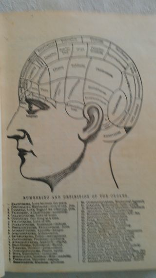 1887 The Illustrated Self - Instructor In Phrenology & Physiology By Fowler Creepy photo