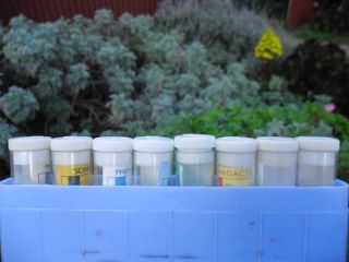 Old Doctors Chemist Pill Tablet Bottles Jars Pharmacy Layby Available All Items photo