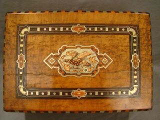 Antique 19thc Victorian Eagle Birds Eye Maple Old Silver Inlay Writing Lap Desk photo