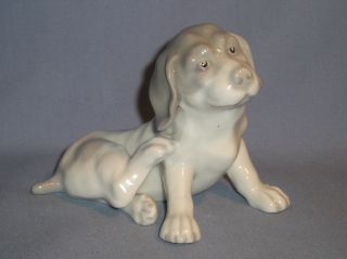 Antique Gebruder Heubach Hound Figurine 1843 To 1925 Mint Adorable Look photo