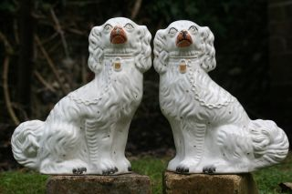 Pair Of 19th C.  Large Staffordshire White & Gilt Seated Hearth Dogs photo