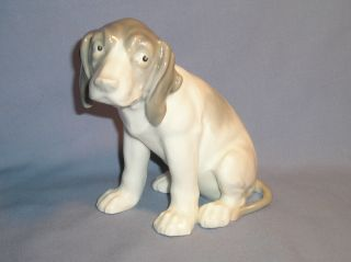 Antique Gebruder Heubach Hound Figurine 1843 To 1925 Mint Adorable Look B photo