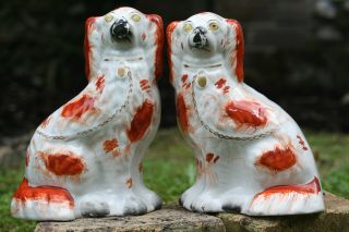 Pair Of 19th C.  Large Staffordshire Brown & White Seated Hearth Dogs photo