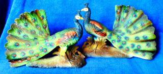 Pair Of Mirror Image Artmark Ceramic Bisque Peacocks Sticker photo