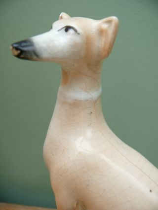 19thc Staffordshire Figure Of A Greyhound In Sitting Pose photo