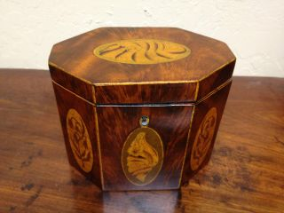 All Ca1820 Shell Inlay Tea Caddy Antique Box photo