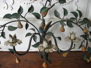 Old Italian Tole Wall Sconce Candleholder Adorable Bird & Fruit Pears photo