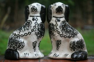 Pair Of 19th C.  Large Staffordshire Black & White Seated Hearth Dogs photo