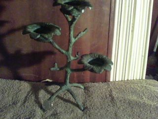 Lg. .  Brass /bronze ~flower. .  Candle Holder. .  Very Unusual photo