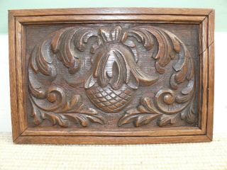 19thc Black Forest Oak Panel Carving With Acorn photo