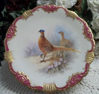 2 Hand Painted & Signed Limoges Wildlife Aviary Plate - Birds,  Florals,  Nature photo