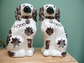 Pr 19thc Miniature Staffordshire Spaniels With Lustre Decor photo