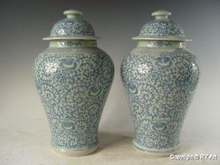Pair Chinese Blue White Porcelain Ginger Jars 14