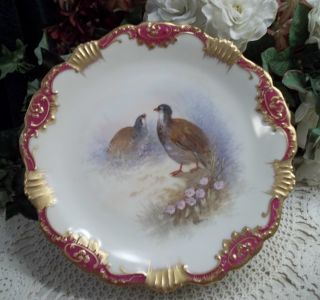 3 Hand Painted & Signed Limoges Wildlife Aviary Plate - Birds,  Florals,  Nature photo