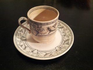Antique Victorian Clovelly Nantasket China Saucer/tea Cup Seaweed Seashells 1876 photo