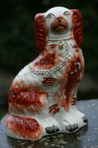 19th C.  Staffordshire Seated Brown & White Hearth Dog photo