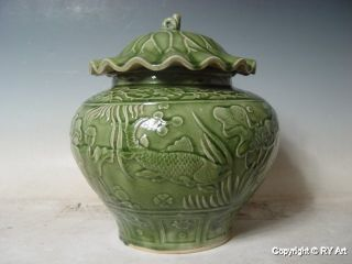 Longquan Celadon Porcelain Jar 14