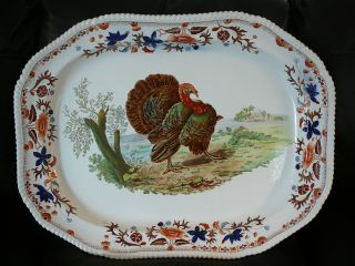 Glorious Hand - Painted Copeland Spode 26