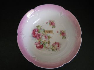 Antique Hand Painted Porcelain Bowl~shades Of Pink Roses - 9 1/2