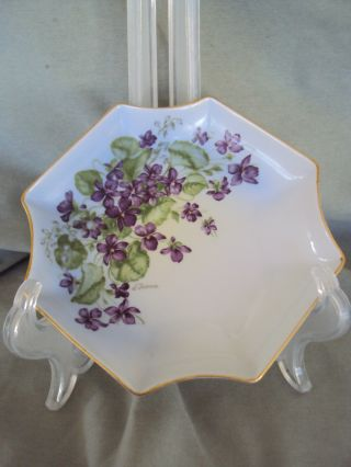 Vintage Violets Dish Imperial Germany Hand Decorated And Hand Signed photo