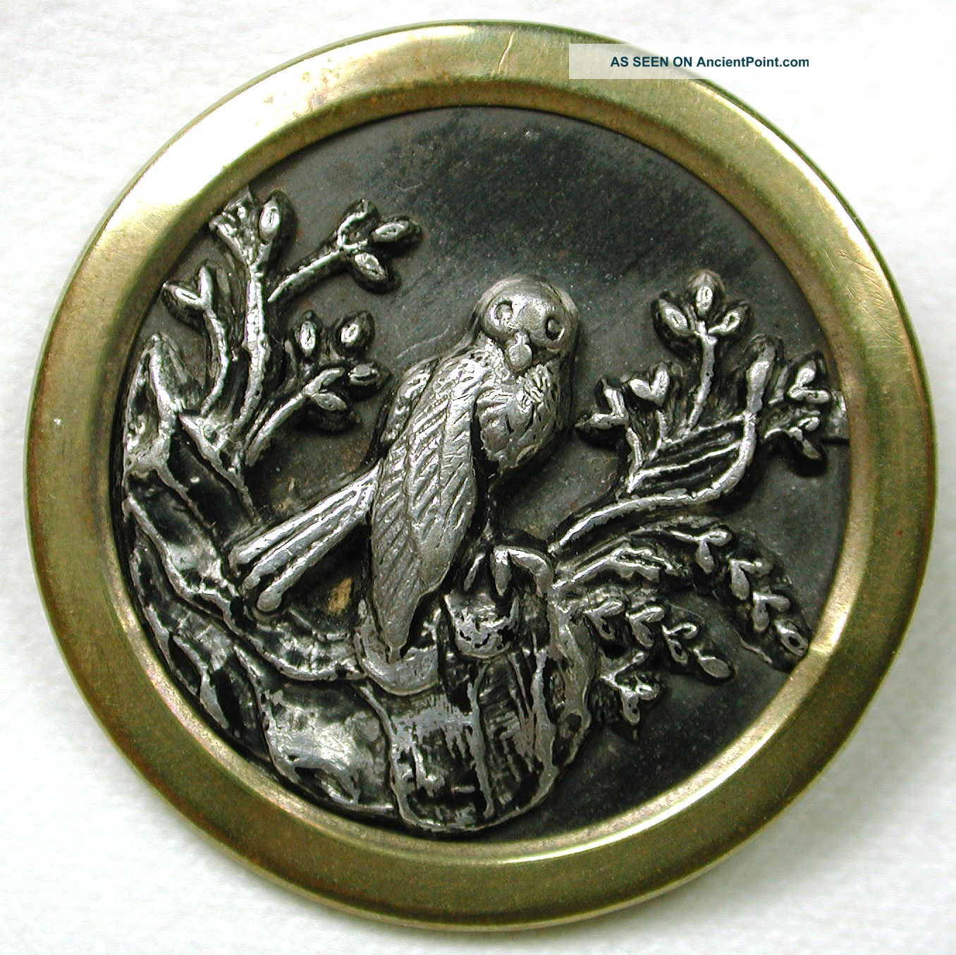Antique Picture Button Detailed Image Of Bird On Branch Lg Sz Buttons photo