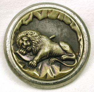 Antique Picture Button Sleeping Lion Design Lg Sz photo