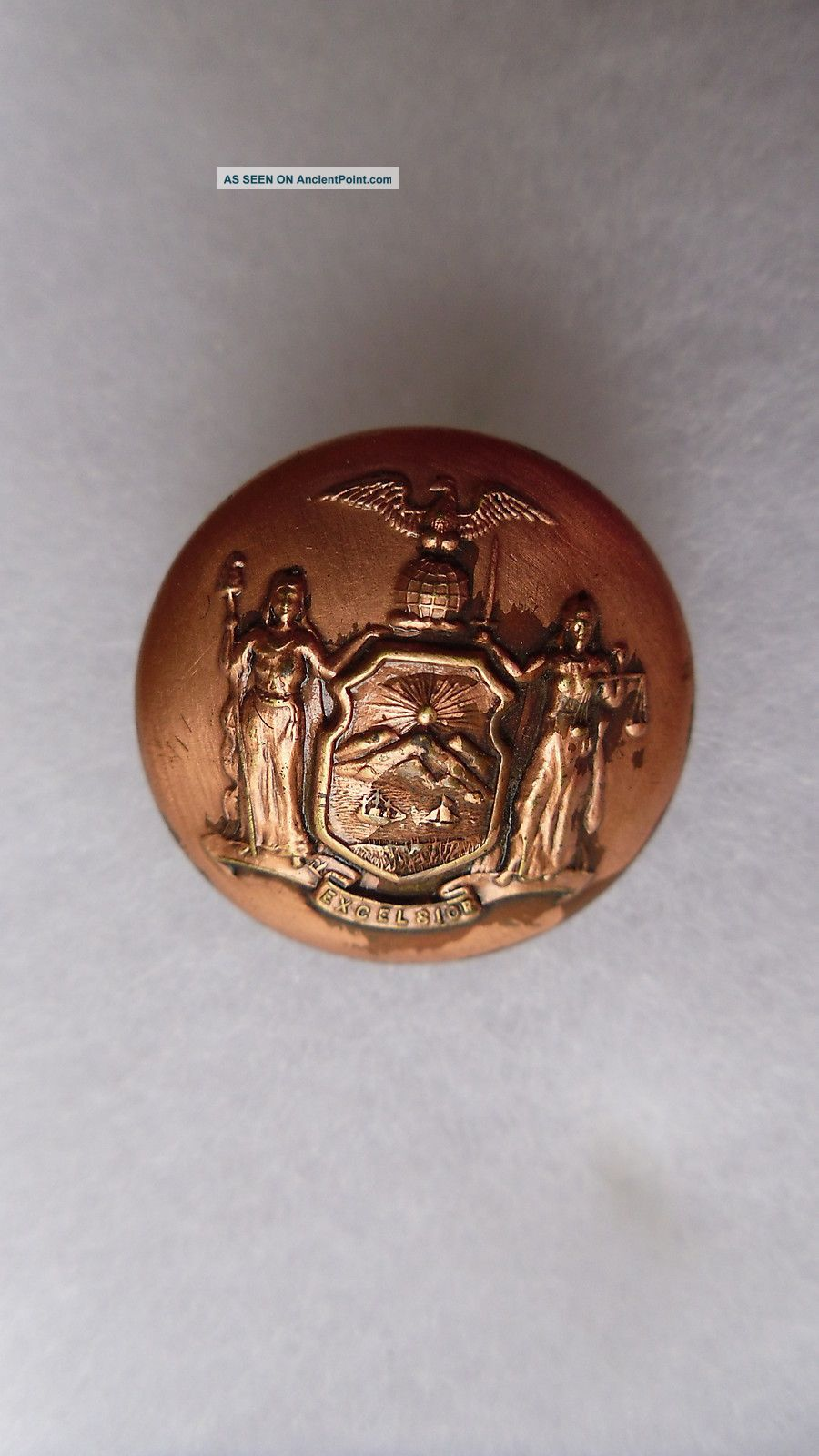 Antique New York State Seal Coat Button Scovill Mfg Co Waterbury 23 Mm Buttons photo