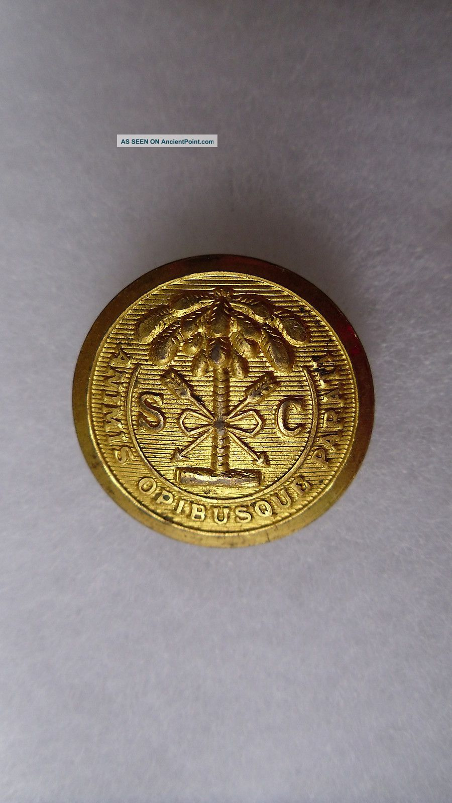 Antique South Carolina State Seal Coat Button Jacob Reeds Sons Norristown 23 Mm Buttons photo