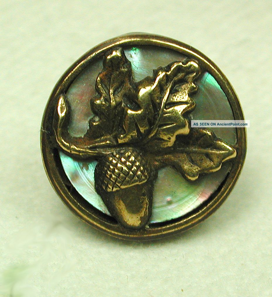Antique Button Brass Acorn & Oak Leaf On Iridescent Shell Back Buttons photo