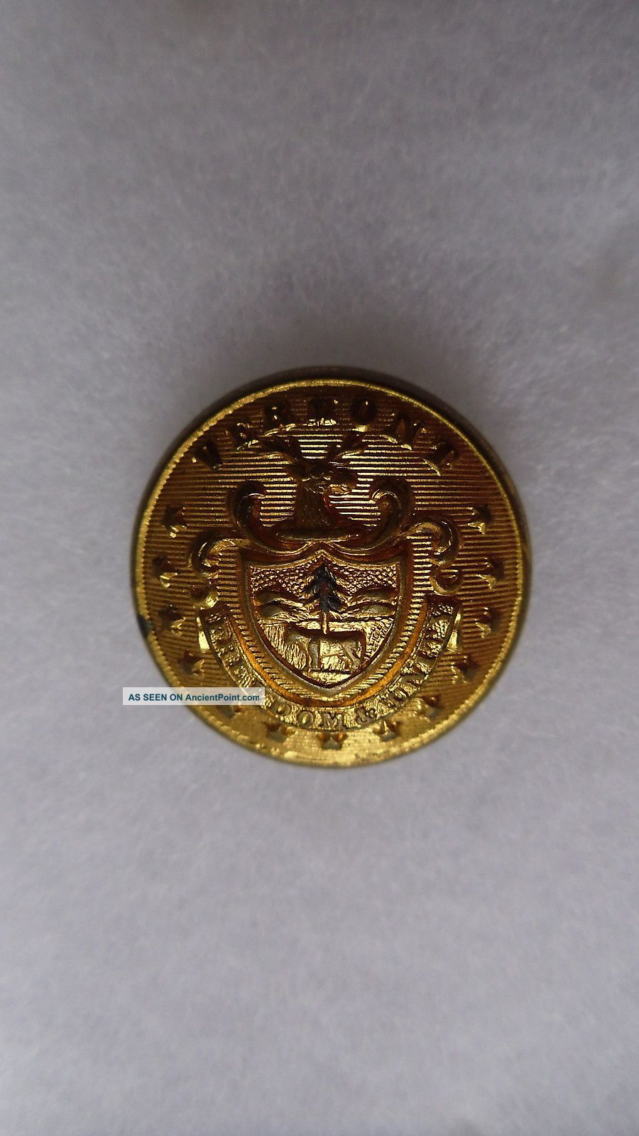Antique Vermont State Seal Coat Button 23 Mm Buttons photo