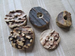 Antique Buttons From Bone/the Are From The Black Forest (5) photo