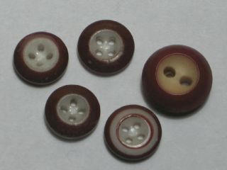 Vintage China Button Lot Brown Rims Wide & Dbl Band photo
