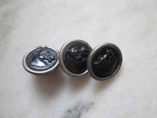 Antique Buttons From Iron Wiht Dog Horse/france photo