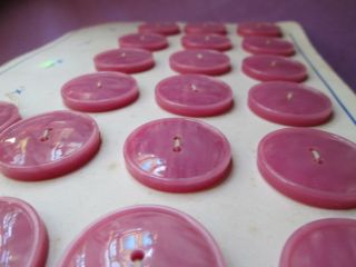 Antique/vintage Buttons From Pink/lila photo