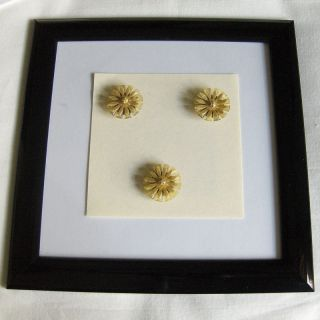 Antique Celluloid Rhinestone Floral Magnets 0909 photo