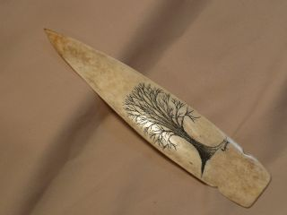 Scrimshaw Buffalo Bone Spear Handle Letter Opener Tree Of Life photo