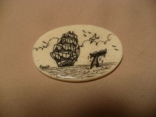 Scrimshaw Bone Worry Stone Ship / Whale Tail photo