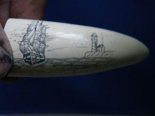 Scrimshaw Replica Tooth