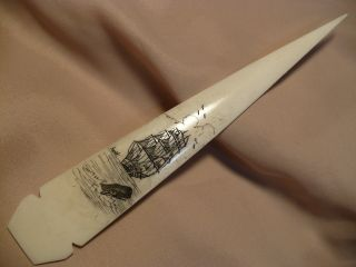 Scrimshaw Buffalo Bone Spear Handle Letter Opener Ship/sperm Whale photo