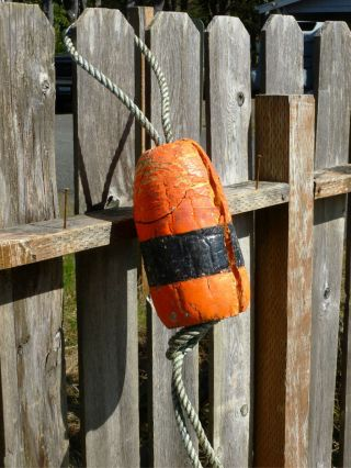 Beachcombed Authentic Crab Float Buoy Bouy Fish Net Lobster Shrimp Fishing 1.  66 photo