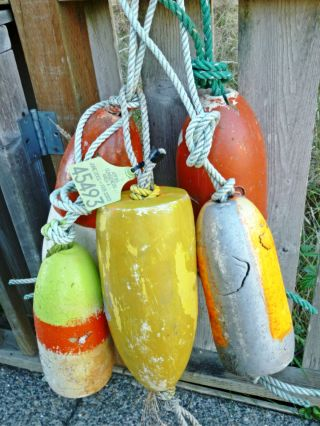 5 Beachcombed Crab Floats Buoy Bouy Net Fishing Fish Lobster Shrimp 58 photo