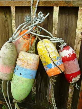 5 Beachcombed Crab Floats Buoy Bouy Net Fishing Fish Lobster Shrimp 70 photo